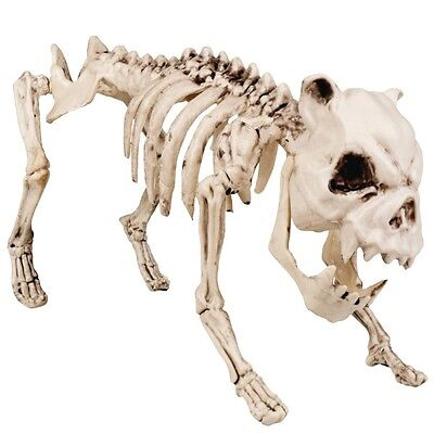 großes HUNDESKELETT 42 cm Tierskelett Horror Halloween Party Deko
