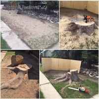 Stump removal BEST PRICE(stump grinding) in Lethbridge and area