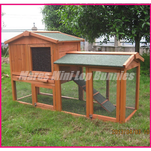 ♥♥♥ Rabbit / Guinea Pig Hutch /  Double Pitched Roof  ♥♥♥ Londonderry Penrith Area Preview