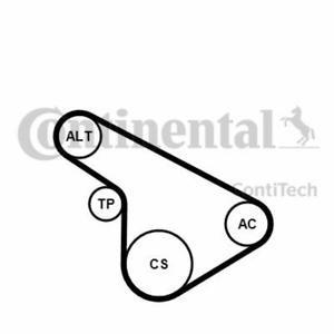 set-cinghia-scanalata-OPEL-CONTITECH-5pk1212k1