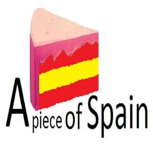 Spanish lessons with a native speaker qualified teacher Redfern Inner Sydney Preview