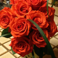 Flower delivery driver required