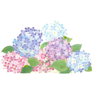 Delicate Laser-Cut Hydrangea Blossoms 3D Pop Up Greeting Card