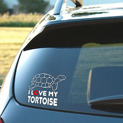 I Love My Tortoise   Vinyl Decal  Sulcata  Turtle  African  Gopher