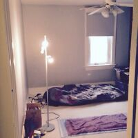 1 BR for Rent in a House