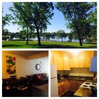 Priced to sell! Beautiful 2 bedroom condo beside university!