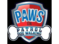 Paws on Patrol Dog Walking