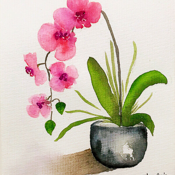Hand painted original watercolor orchids by Shan