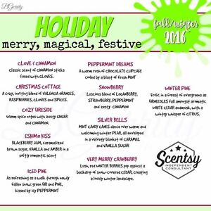 Scentsy Products Kingston Kingston Area image 5