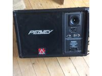 Peavey powered monitor for sale