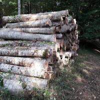 recherche bois chauffage en 4' ou 8' bois frans livré a chester