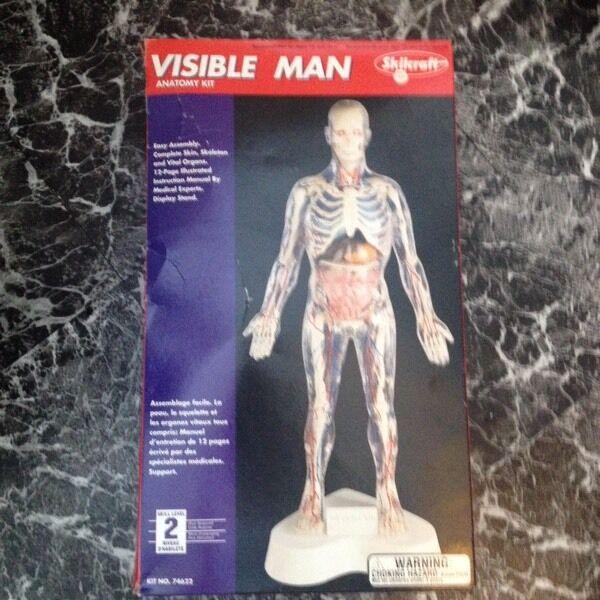 Visible man anatomy kit | in Washington, Tyne and Wear | Gumtree