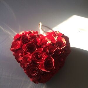Heart shaped Hanging Roses