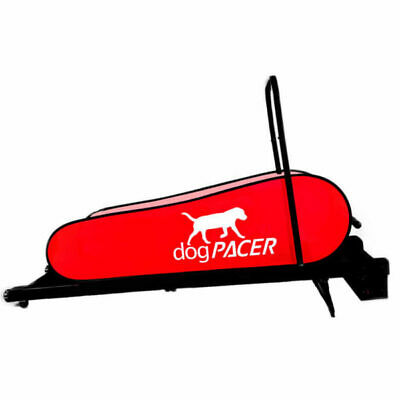 dogPACER Dog Mini Treadmill MiniPacer Folds Portable Small Med Dogs 1-55 lbs NEW