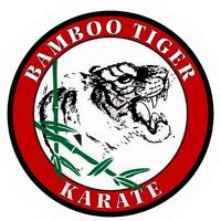 Bamboo Tiger Karate Classes!!