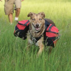 Ruff Wear Palisades Backcountry Dog Pack - Red Currant - Small