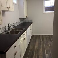 Large newly renovated 2 bedroom suite.
