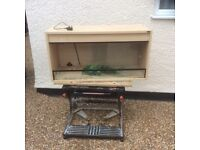 Complete large vivarium with loads of extras