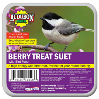 Audubon Park 1844 Berry Treat Suet Wild Bird Food, 11.75 Oz