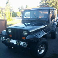 1990 Jeep Wrangler Coupe (2 door)