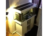 Aqualantis 3ftx3 x 1ftx7 fishtank for sale complete with stand great condition