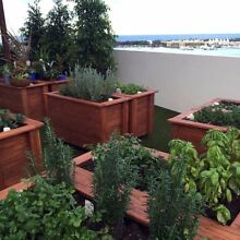 EcoWise Planters Macleod Banyule Area Preview