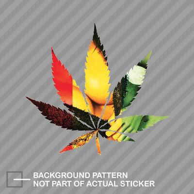 Cannabis Leaf Wall Sticker Plant Wall Sticker