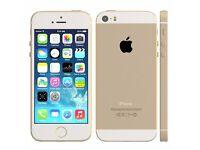 *Factory Unlocked - Good* Apple iPhone 5S Gold 16GB 4G/LTE Retina latest iOS 9.3.3