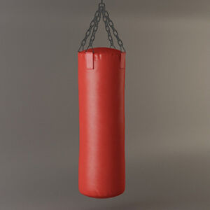 sac d entrainement (punching bag)