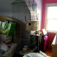 Tall Bird Cage with Nest Box