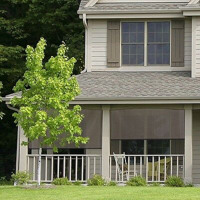 Roll Up Shade Outdoor Window Patio Blind Exterior Sun Deck Porch Roller - Outdoor Window