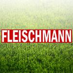 Fleischmann Werkzeuge