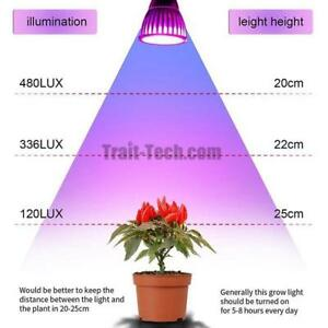 LED lumiere cultiver jardin / LED grow lights for indoor garden