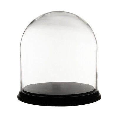 """Clear Glass Cloche Dome H-10"""", D-10"""", with Black Wood Base H-1"""", D-11"""", 1 pc"""