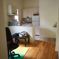 3.5 apartment 5 minutes from McGill *Cat friendly*