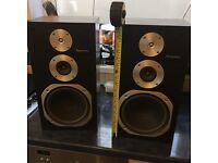 Technics speakers with adjustable wall brackets