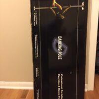 Portable dance/exercise pole