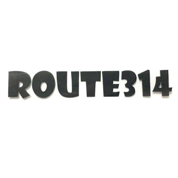 route314