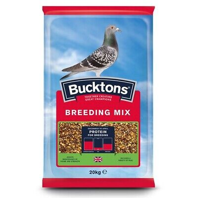 Bucktons Pigeon Breeding & Racing Bird Seed - High Protein Food - 20 kg Feed Mix