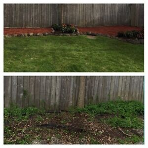 Arm's Landscaping, Recycling & Multi-Tarde London Ontario image 5