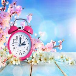 Alarm Clock Wooden Floor Flowers Photography Background 10x10ft Studio Backdrop