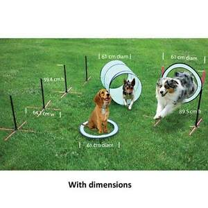 SportPet Agility Training Kit : High Jump Ring - Pop-open Tunnel - 4 Weave Poles