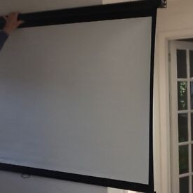 Wall /ceiling projector screen