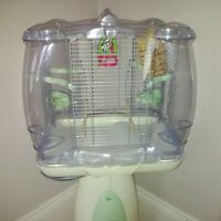 selling almost new living world cage and stand with finch