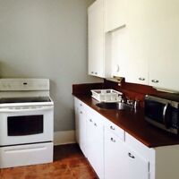Available NOW- main floor 1 bedroom newly renovated