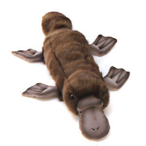 Platypus collectable soft toy by Hansa - 40cm - 3250
