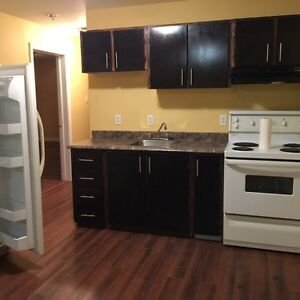 Room For Rent In 2 Bedroom Apartment