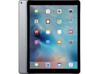 iPad Pro 12 inches 128 GB WiFi Silver and Grey