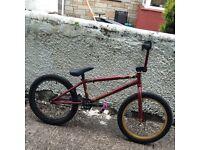 Fit bike (used)