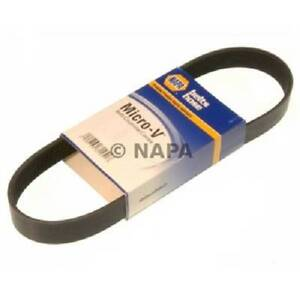 NEW Napa Micro-V Belt
